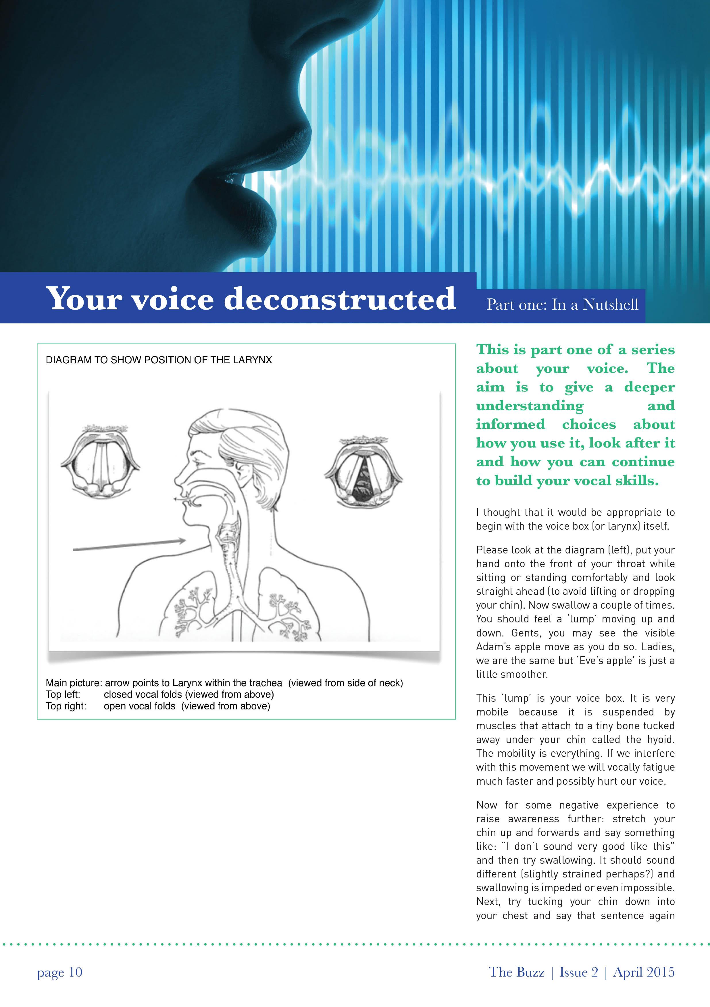 Your Voice Deconstructed – Part 1 Article