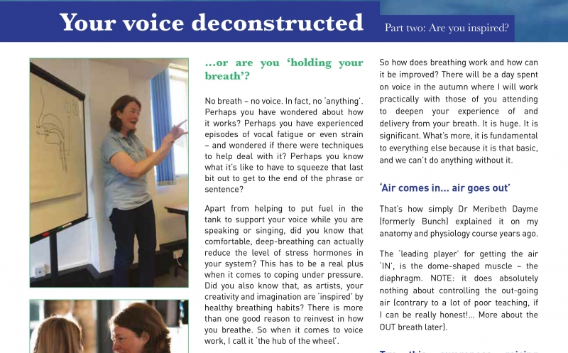 Your Voice Deconstructed – Part 2 Article
